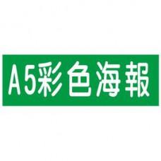 【1768購物網】彩色A5海報